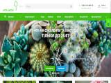 ГалСад, інтернет-магазин рослин