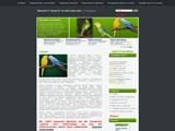 Годування хвилястих папуг